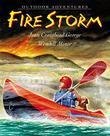 Cover art for FIRE STORM