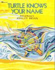Cover art for TURTLE KNOWS YOUR NAME