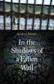 Cover art for IN THE SHADOWS OF A FALLEN WALL
