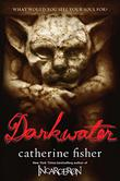 Cover art for DARKWATER