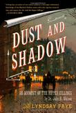 Cover art for DUST AND SHADOW