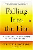 Cover art for FALLING INTO THE FIRE