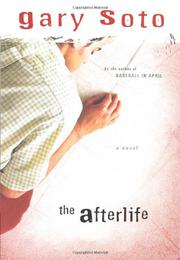 Book Cover for THE AFTERLIFE