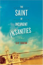 Book Cover for THE SAINT OF INCIPIENT INSANITIES