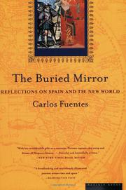Cover art for THE BURIED MIRROR