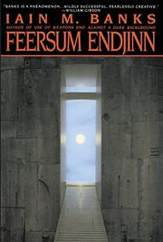 Book Cover for FEERSUM ENDJINN