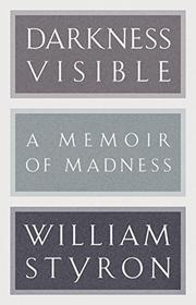 Book Cover for DARKNESS VISIBLE