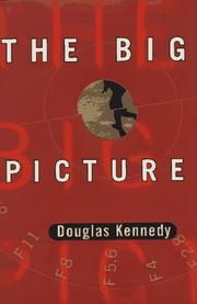 Book Cover for THE BIG PICTURE