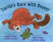 Book Cover for TURTLE'S RACE WITH BEAVER