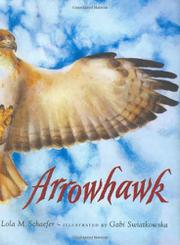 Cover art for ARROWHAWK