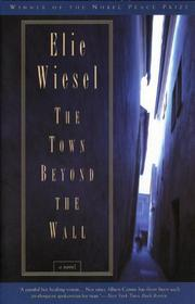 Book Cover for THE TOWN BEYOND THE WALL