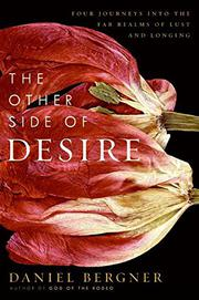 Cover art for THE OTHER SIDE OF DESIRE