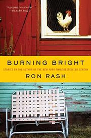 Cover art for BURNING BRIGHT