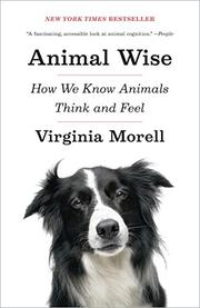 Book Cover for ANIMAL WISE
