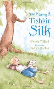 Book Cover for THE NAMING OF TISHKIN SILK