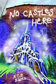 Book Cover for NO CASTLES HERE