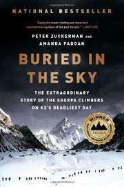 Cover art for BURIED IN THE SKY