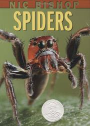 Cover art for NIC BISHOP SPIDERS