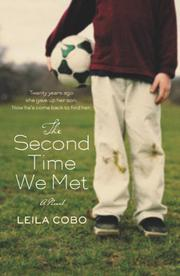 Book Cover for THE SECOND TIME WE MET