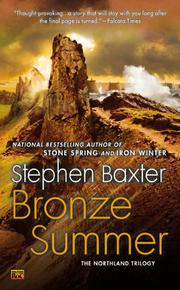 Book Cover for BRONZE SUMMER