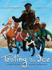Book Cover for TESTING THE ICE