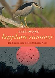 Cover art for BAYSHORE SUMMER