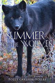 Book Cover for SUMMER OF THE WOLVES