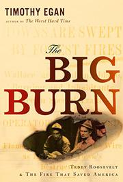 Cover art for THE BIG BURN