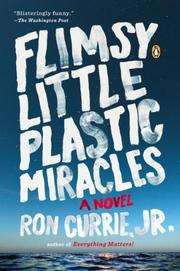 Cover art for FLIMSY LITTLE PLASTIC MIRACLES