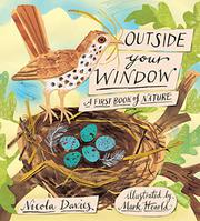 Book Cover for OUTSIDE YOUR WINDOW