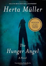 Cover art for THE HUNGER ANGEL