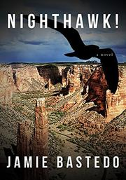 Book Cover for NIGHTHAWK!