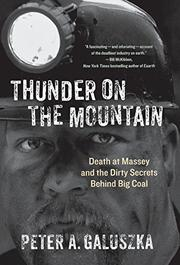 Cover art for THUNDER ON THE MOUNTAIN