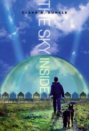 Book Cover for THE SKY INSIDE