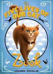 Book Cover for THE FIVE LIVES OF OUR CAT ZOOK