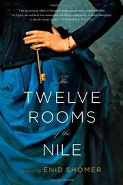 Cover art for THE TWELVE ROOMS OF THE NILE