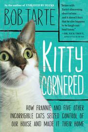 Book Cover for KITTY CORNERED