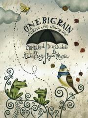 Book Cover for ONE BIG RAIN