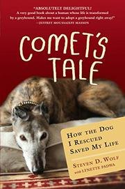 Cover art for COMET'S TALE