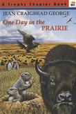 ONE DAY IN THE PRAIRIE by Richard Cowdrey