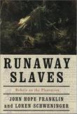 Cover art for RUNAWAY SLAVES