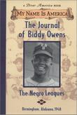 THE JOURNAL OF BIDDY OWENS by Walter Dean Myers