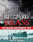Cover art for BLIZZARD OF GLASS