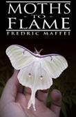 Cover art for MOTHS TO FLAME