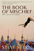Cover art for THE BOOK OF MISCHIEF
