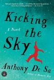 KICKING THE SKY by Anthony De Sa