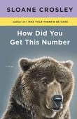 HOW DID YOU GET THIS NUMBER by Sloane Crosley
