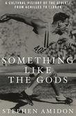 SOMETHING LIKE THE GODS by Stephen Amidon