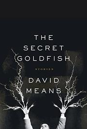 Cover art for THE SECRET GOLDFISH