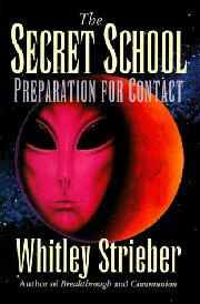 Cover art for THE SECRET SCHOOL